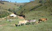 Fazenda em MG Lima Duarte(perto Juiz de Fora)33,6 hectares