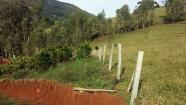 Sítio 3,23 hectares Alegre de cima